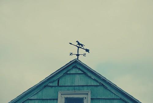 random Portland rooftop II