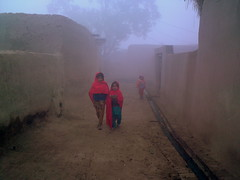 One Foggy Morning In the Village (Agriman) Tags: pakistan love children village punjab myeverydaylife mohsinabad colorsofpakistan