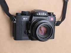 Leica R7 and Summicron-R  1:2 50mm lens (jiulong) Tags: leica lens 50mm 12 r7 summicronr