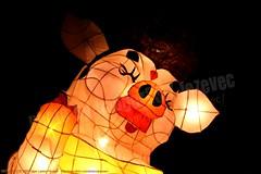 2007-03-03 1137 2007 Taipei Lantern Festival (Badger 23 / jezevec) Tags: festival night lights pig colorful taiwan parade taipei formosa float  hai taipeh boar  lanternfestival 2007  chineselantern  chiangkaishekmemorialhall  republicofchina yearofthepig    aonuevochino  capodannocinese   taiwn chaingkaishek   20070303    tapeh    badger23 shangyuanfestival ftedeslanternes     lyhtyjuhla chinesischeslaternenfest