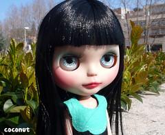 La nueva Coco (------coconut) Tags: wow petal coco bow blythe custom trad enchanted scalp remaquillada
