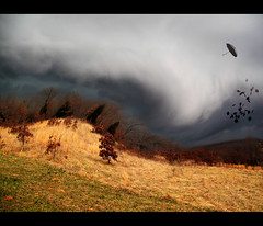 """The Storm"" (believer9) Tags: sky storm leaves clouds umbrella photoshop wind blowing best hills filter twirl tornado bestofthebest platinumphoto theunforgettablepictures savebeautifulearth"