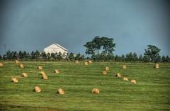 Crescent Farm HDR