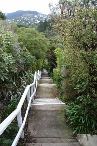 Rangiora Avenue steps