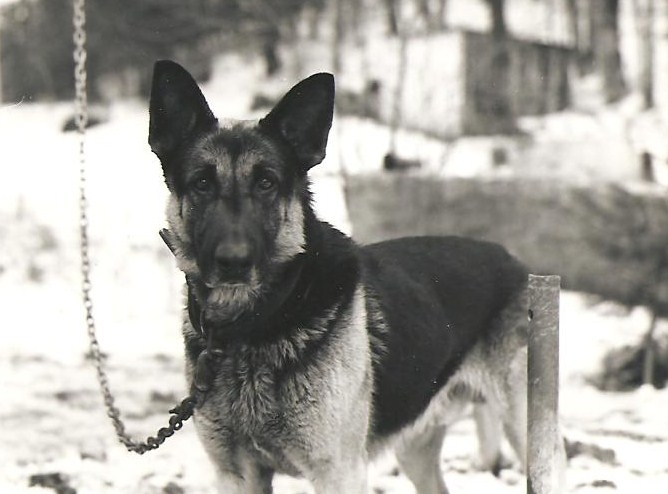 Heindrich Otto
