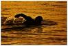 Swimming time! (andzer) Tags: summer people holiday hot nikon joy scout andreas explore vacancy 2009 καλοκαίρι zervas andzer horizonsofculture horoc ορίζοντεσπολιτισμού wwwandzergr
