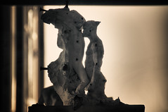 RODIN IN LOVE (Pedro Salvador) Tags: pars pedrosalvador pedropablosalvadorhernndez wwwpedrosalvadores