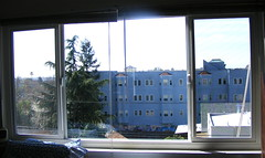 the new living room windows