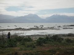 Kaikoura (kathleenbarber) Tags: newzealand kaikoura itp foreshore