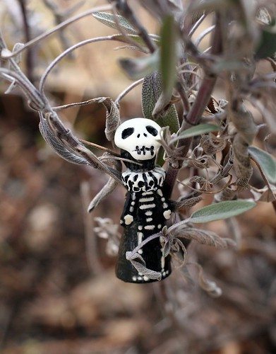Skelly hanging out in the sage