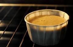 Sponge Cake Mixture in Oven: The Beginning