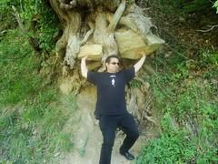 Holding the tree (sotoz) Tags: water falls kozani kataraktes velvento metoxi aliakmonas belbento