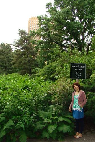中央公園-STRAWBERRY FIELD
