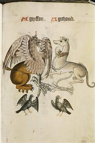 MS. Ashmole 1504 (b)
