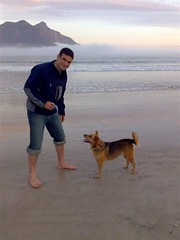 Hout Bay & Dog