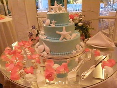 Seashell Cake on Table