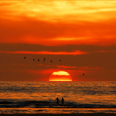 Romantic and refreshing jump! (Bn) Tags: sunset seagulls fairytale freshair zonsondergang noordzee topf300 northsea chapeau romantic dreamlike refreshing topf100 500faves soe topf250 topf200 handinhand wijkaanzee topf400 boyandgirl topf500 romantisch velsennoord zeemeeuwen topf700 topf600 topf1000 supershot 100faves topf800 200faves topf900 youdare perfectsunset abigfave 300faves 1000faves platinumphoto romanticsunset anawesomeshot aplusphoto visiongroup holidaysvacanzeurlaub 400faves irresistiblebeauty 600faves megashot ysplix 900faves 700faves thegoldendreams goldstaraward 800faves exploreheaven damniwishidtakenthat sunsetat2202 letsgotoholland refreshingjump onlyinthemovies justhitmewithyourbestshottop10october2008photocontest