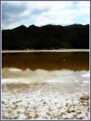 dietro spiaggia del loto corsica (Pierluigi Grandis) Tags: sale corsica settembre spiaggia loto dietro