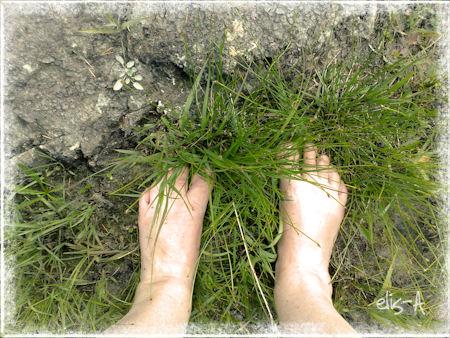summer feet 2