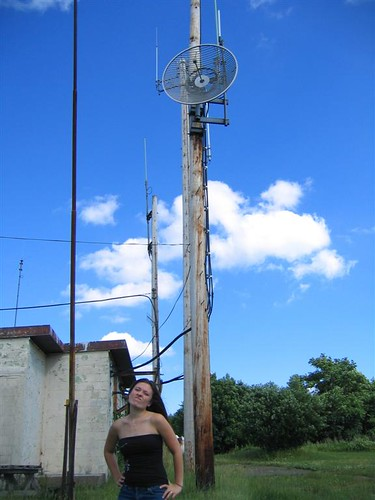 Satelite dish and an Allycat