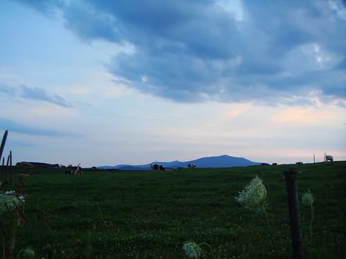2008.07.12 Vermont 238