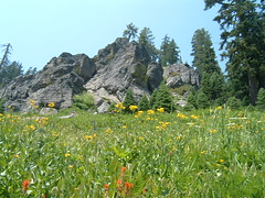 Meadow and Crags (Chris Hunkeler) Tags: nationalpark rocks meadow craggy wildflowers lassen crag