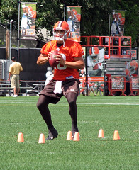 quinn (selina_amam) Tags: football clevelandbrowns trainingcamp bradyquinn