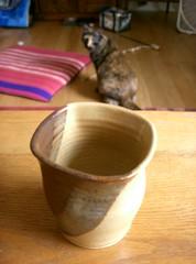 Vase and Cat