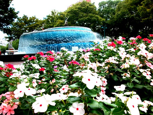 Flower and fountain