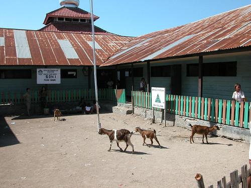 School Bungin Island Sumbawa
