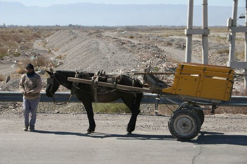 Slow transport in Argentina...
