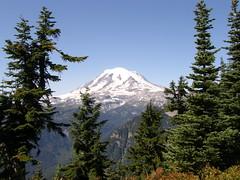 Rainier view from Shriner peak camping area #1