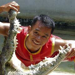 Smile and sweat! (Bn) Tags: wai steveirwin samutprakan crocodiledundee amazingthailand thewai barehanded dangerousact dailyshows crocodileshow samutprakancrocodilefarm crocodilewrestlers jawsnappingshow razorsharpjaws lotofbravery stupiditytoo nearbybangkok thaicrocodiledundee samutprakarncrocodilefarm dicewithdeathdicewithdeath hypnotizedhypnotized quiteamazingshow realdangeroustricks insidemouthofcrocodile respecttothisancientreptile reverencetothiscrocodile unconsciousstate performersgestures