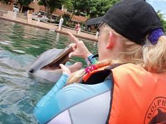 dolphin trainer academy- puerto aventuras (ABC Dolphin Trainer Academy) Tags: students dolphin academy