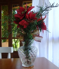 Enfeite de Natal para a mesa (Santinha - Casas Possveis) Tags: brazil brasil natal artesanato artes reciclagem araucarias pinhas viscondedemau serradamantiqueira reaproveitamento pousadaterracrua natalnatural natalbrasileiro enfeiteparamesas