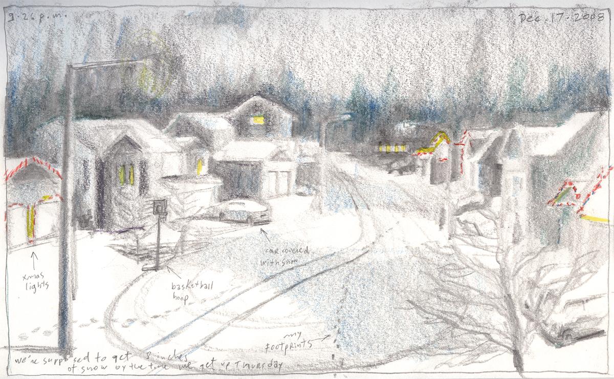 snownight121708h