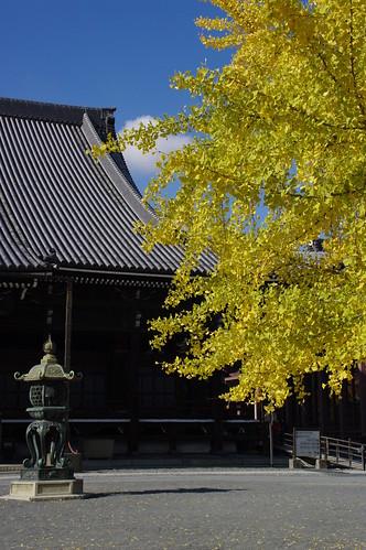 honganji /kyoto