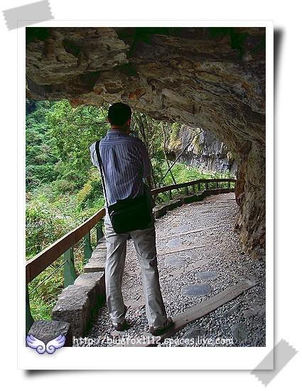 081124東台灣樂活之旅第7站_太魯閣國家公園09_砂卡礑步道