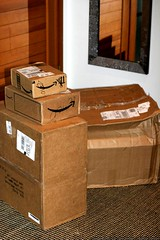 third UPS delivery in two days - after being snowed-in for 14 days - _MG_5647