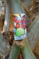 coconut water container