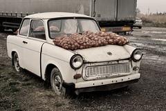 krumpli / recycling Trabant (.e.e.e.) Tags: film car animals analog hungary scan mf analogue yashica manualfocus 45mm trabant filmscan 1745 electro35gsn anawesomeshot yashnon