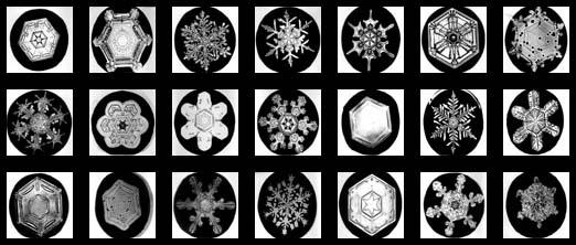 Wilson Bentley S Snowflake Photographs