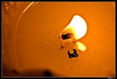 Vela (Carlos J. Teruel) Tags: espaa macro d50 fire nikon llama murcia fuego vela cera beeswax 105mm nikkor105mmf28gvrmicro xaviersam
