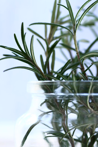 Rosemary in a jar