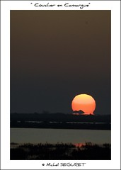 Coucher au Phare de la Gacholle (Camargue) (Michel Seguret) Tags: life sunset fab sun france verde green sol nature fun soleil nikon postcard coucher delta vert paca enjoy sensational provence grn fabulous iq 13 atm sonne soe shiningstar naturesbest couchant camargue rhone smrgsbord enjoylife cubism cartepostale fiatlux wonderfulnature bouchesdurhone objektif nikond200 thinkgreen 5photosaday kartpostal amazingcapture bestmoment diamondheart diamondstars thisphotorocks internationalgeographic thebestmoment thebestofday gnneniyisi arealgem worldtrekker thebestoftheday checkoutmynewpics spiritofphotography gnnenlyisi colourvisions rubyphotographer nikonflickraward nikonflickraward flickrverte naturallymagnificent flickrpopularphotographer croquenature excelenceofphotographer artofimages flickraward diamondphotographersclub favoritetravel favoritecolorsandlights favoritelandscape michelseguret