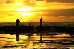 golden fishing (Jong Soo(Peter) Lee) Tags: sunrise colorphotoaward aplusphoto micarttttworldphotographyawards micartttt