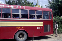 Philippine Rabbit Isuzu CVK-761 (fleet No 825) on the Naguilian Road between Baguio and Bauang, La Union, Philippines. (express000) Tags: bus philippines baguio laoag bauang philippinesbuses busesinthephilippines bauanglaunion philippinebuses philippinerabbitbusco naguilianroad bauanglaunionphilippines