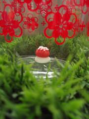 Le champignon... (astel83) Tags: cute mushroom kitchen rouge tofu spoon champignon decole decolello
