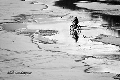 (Alieh) Tags: snow water bike river persian iran persia iranian  esfahan isfahan    zayandehrood aliehs alieh      saadatpour snowypeopleproject