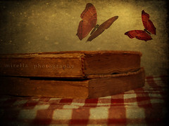 .....books are for people who wish they were somewhere else (~bumblebee(mirella)~) Tags: photoshop books bumblebee textures photoshop70 mirella butterflys wonderfulworld texturized 372lematin